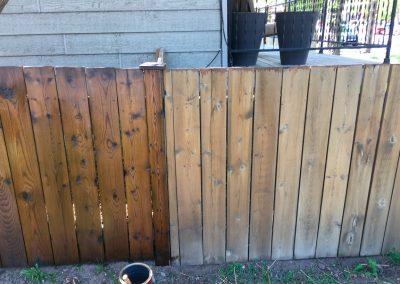 Wood Staining Fence